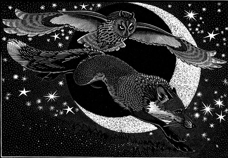 Colin See Paynton, Nocturnal Encounters - Fox and Long Eared Owl, wood engraving