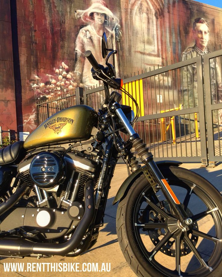 The Timeless Harley Davidson Iron 883 - A Modern Classic www.rentthisbike.com.au #rentthisbike #rtb #cruiser #motorbike #harleydavidson #harleylife #harleyaustralia #Brisbane #Australia #Art #AussieTalent