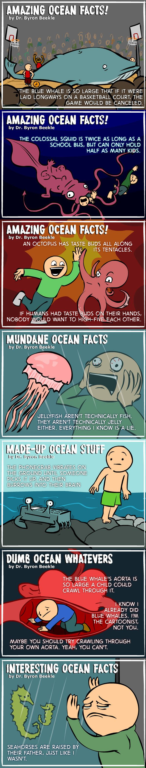 Real Ocean Facts. Broaden your minds!