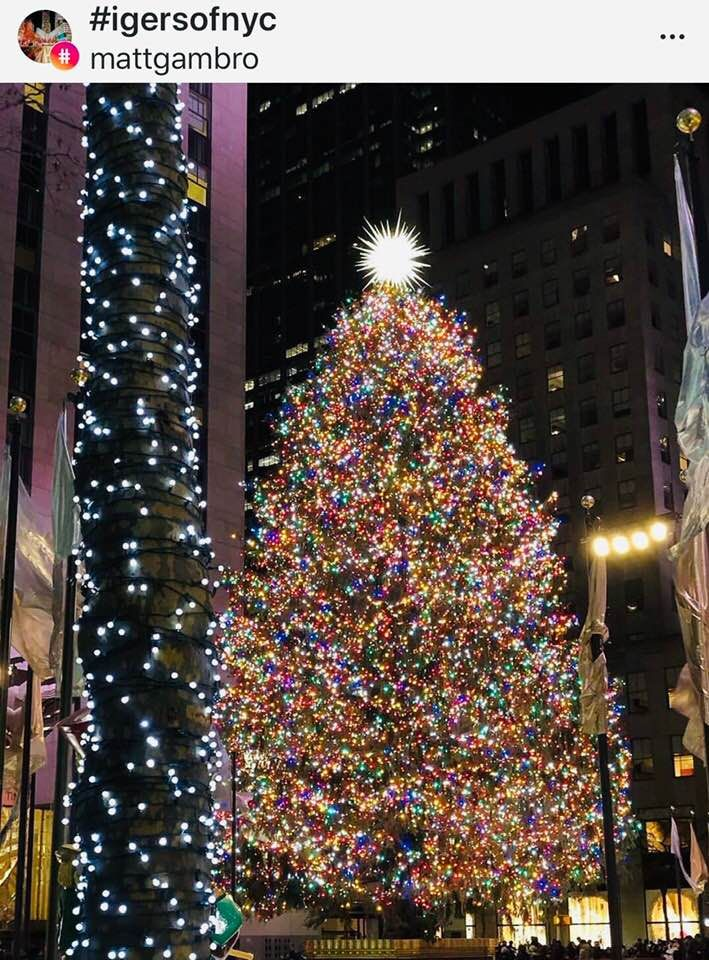 Nyc Christmas Photo Found On Instagram Credit To Owner New York