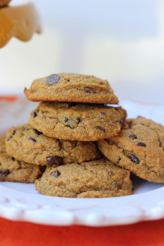 Moist and Soft, Spiced Pumpkin Chocolate Chip Cookies! {Gluten-Free, Grain-Free, Paleo}