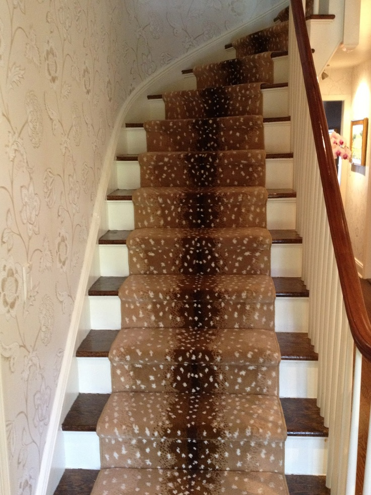 25 Best Ideas About Carpet Stair Runners On Pinterest: 59 Best Images About Stair Runners On Pinterest