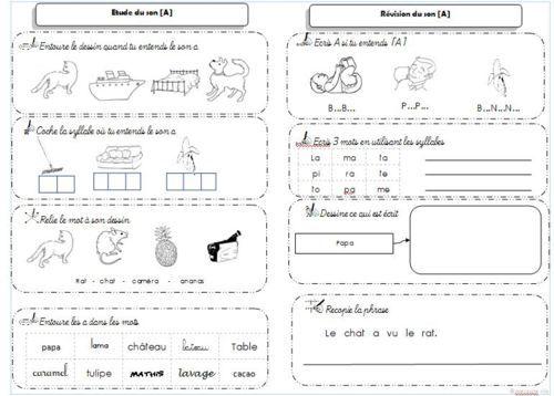 leçons et exercices cp (étude de sons) les alphas et borel maisonny