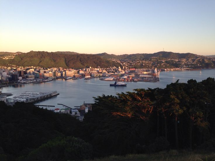 Sunrise view from Mount Victoria, Wellington, New Zealand.