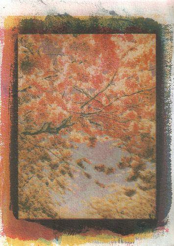 acid tree   by l4dypeace