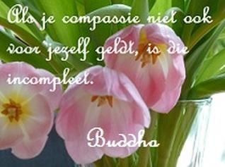 """Gautama Boeddha """"Als je compassie niet ook voor jezelf geldt is ze niet compleet"""", Gautama Buddha  """"If your compassion is not for yourself too, it is impcomplete""""    wisdom never dies"""