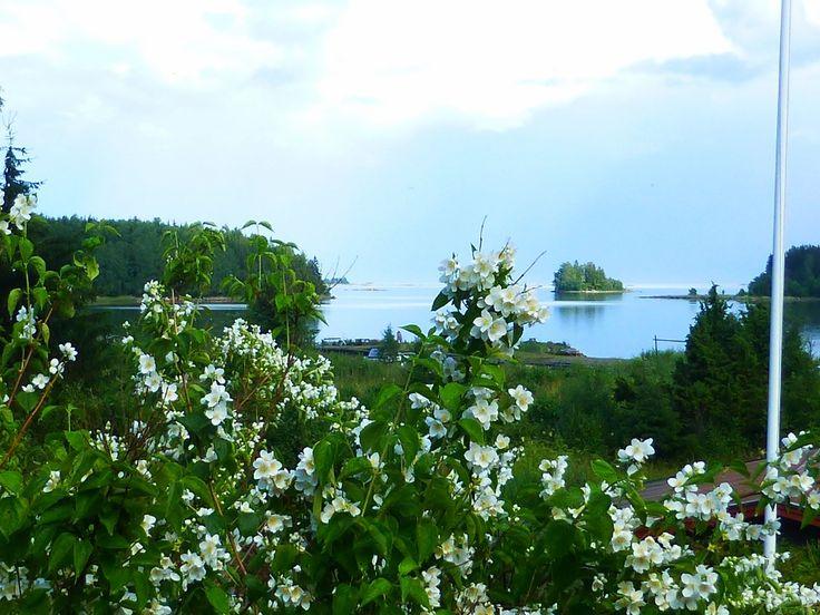 Vålnäsberget Trödje