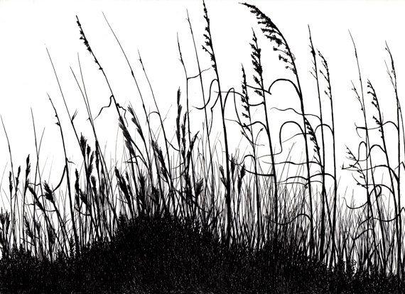 Tall grasses drawing
