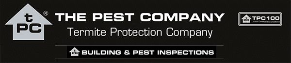 Termite Damage that will bring tears to your eyes Thanks for using our services 2018 here we go