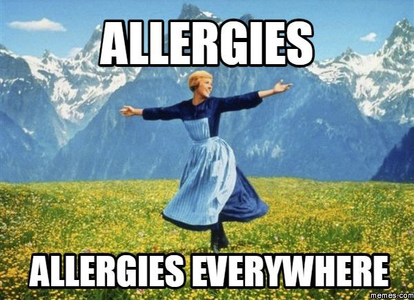 Funny Quotes About Allergies: 11 Best Allergy Funnies Images On Pinterest