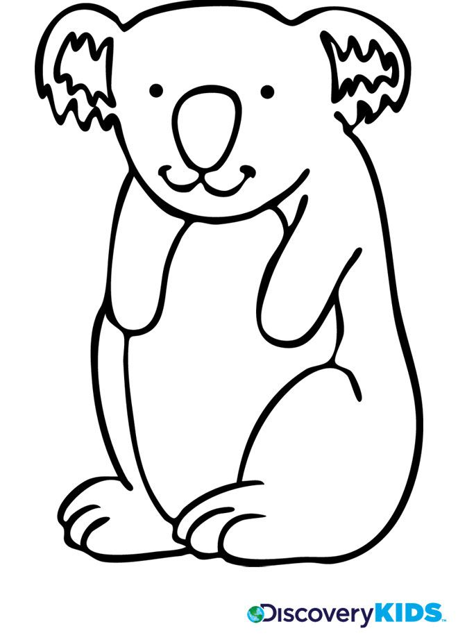 koala bear coloring pages - 18 best images about coloring books and worksheets on