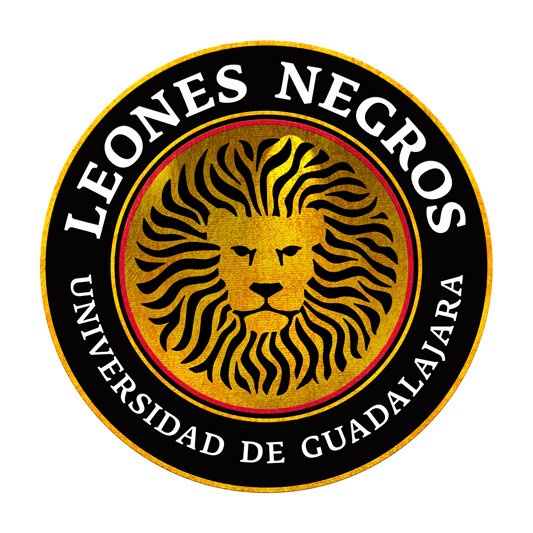 Leones Negros - I like the look of this