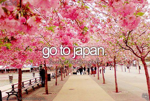 Aller au Japon : Tokyo & Kyoto, voir de vraies geishas et maikos, nourrir des daims en liberté, admirer les érables, manger de la tempura, ...