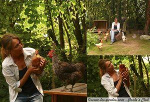 Tout savoir sur les poules : élever, nourrir, soigner vos poules