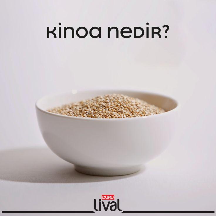 Kinoa nedir? Sağlığa olan faydaları nelerdir?  Nasıl tüketilmelidir? Kinoa hakkında bilmeniz gereken önemli bilgiler ilgili yazımızda.