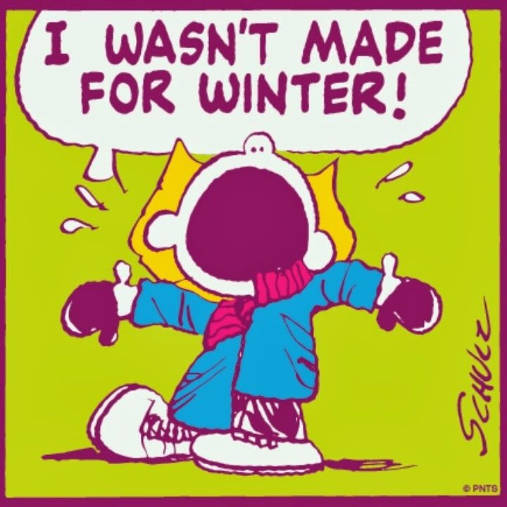 Blog post for 2/13/14-Jersey girl dealing with her customary attitude with Seasonal Affective Disorder in the middle of the biggest Nor'easter of the year....:
