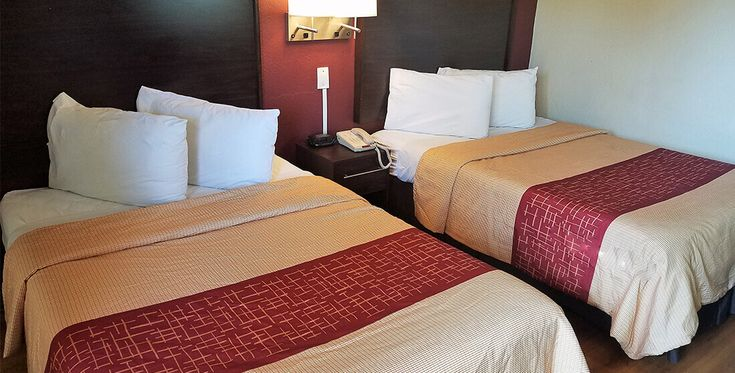 Affordable, Pet Friendly Hotel In San Antonio, Texas   Red Roof Inn San  Antonio