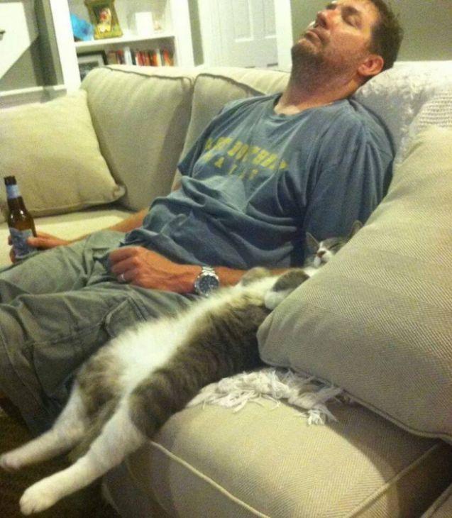 ...Verander de zender!, 20 geweldige luie katten die totale ontspanning hebben bereikt - (Page 5)