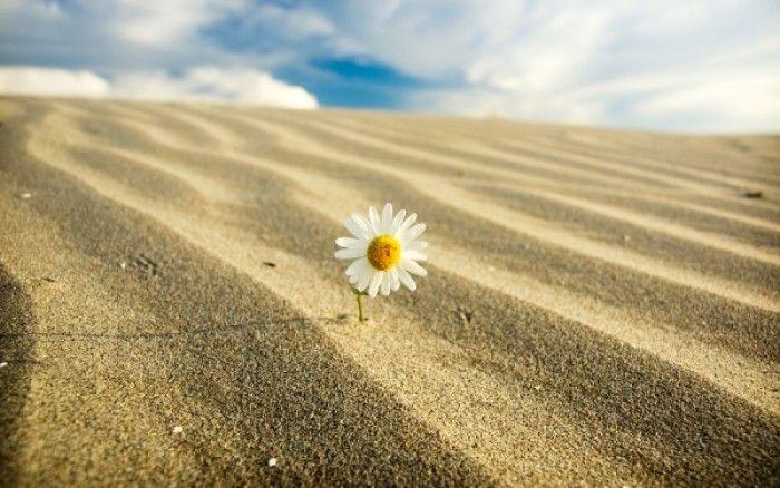 Κολπική ξηρότητα: Πού οφείλεται και πώς θα την αντιμετωπίσετε