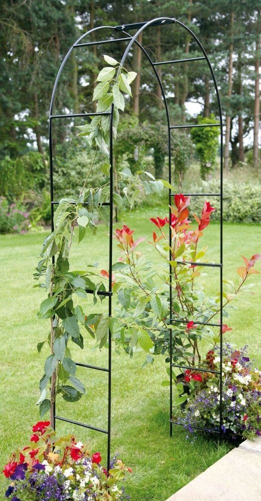 Garden Rose Arch Pergola Climbing Trellis Roses Plants Metal Archway Decorative