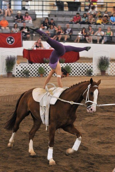 Equestrian Vaulting Rocks!
