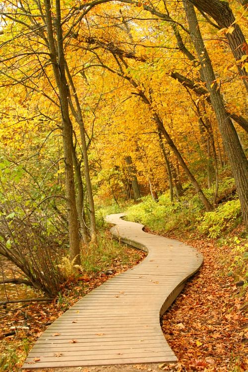 Best Places to Hike with Kids in the Twin Cities - The Mama Report | The Mama Report