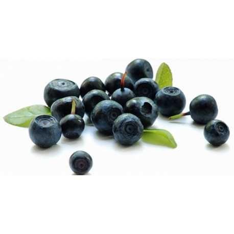 Η ασπίδα σας κατά της γήρανσης! - Βιολογικά ωμά μούρα ακάι ψυχρής αφύγρανσης σε σκόνη - Organic raw freeze dried acai berry powder
