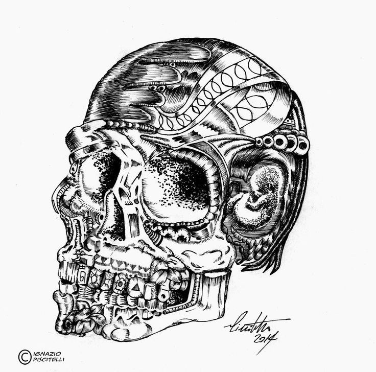 millevignette di ignazio piscitelli: Skull