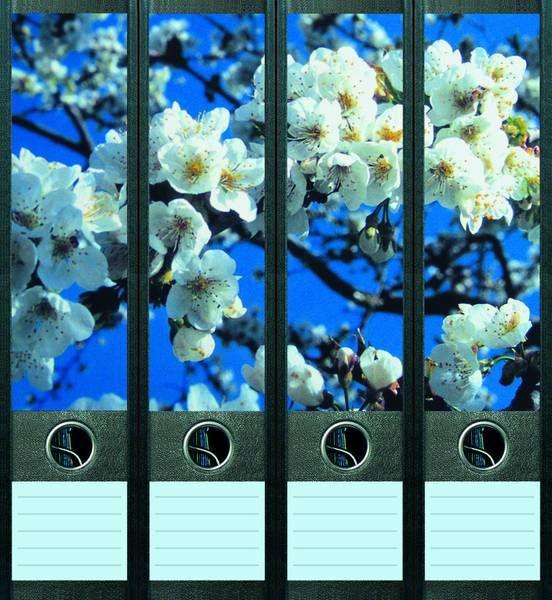 Lever Arch File Label Cherry Blossoms AJ020