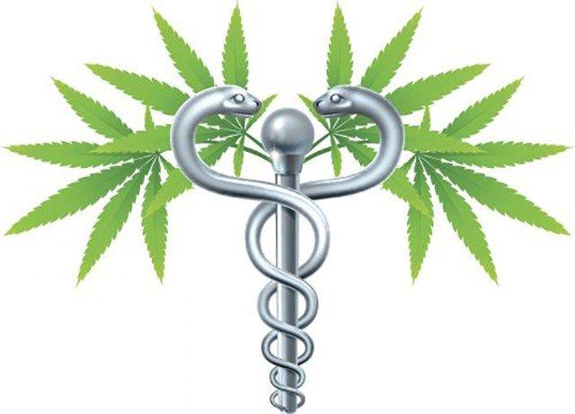 Die Politik der USA in Sachen Cannabis ist der hiesigen schon seit Jahren mehrere Schritte voraus. Abgesehen von der Legalisierung von Cannabis als Genussmittel in acht Bundesstaaten erlauben inzwi…