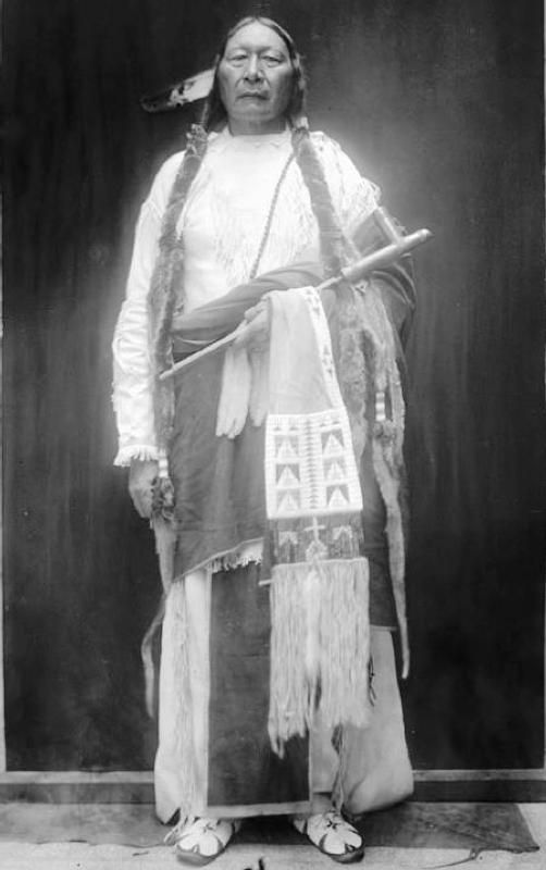 Historic Photograph Prairie Chief, a Southern Cheyenne; son of Wolf Grey/Grey Beard and Old Standing Woman. Prairie Chief's family was at the Sand Creek Massacre. Wolf Grey appears on the list of Sand Creek people which was compiled in 1865 at the treaty of the Little Arkansas, Kansas. Wolf Grey or Grey Beard was shot and killed in 1875 while being taken to prison at Fort Marion, Florida. Prairie Chief passed in October, 1917.