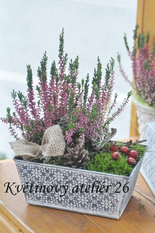 Květinový Ateliér 26 - vřes, podzimní aranžmá ... https://www.facebook.com/kvetinovyatelier26/