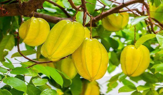 Ce fruit contrôle le diabète, abaisse le cholestérol et lutte contre l'inflammation