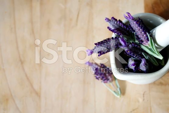 Fresh Lavender in Pestle and Mortar royalty-free stock photo
