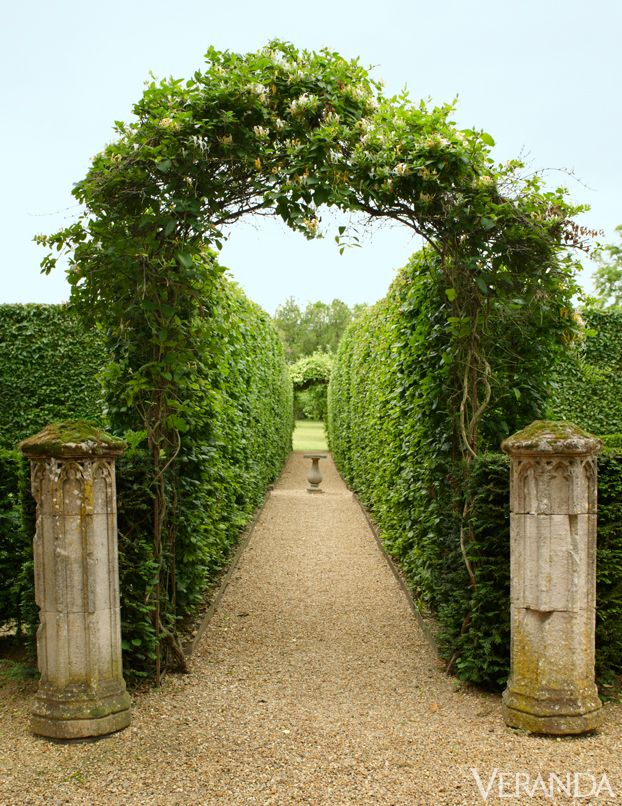 Gothic stone columns and an arch of jasmine and honeysuckle. Hornbeam allée.