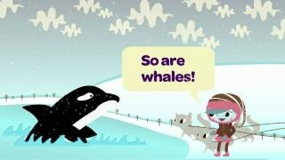"""Another fun video to show to Brownies! (Maybe while they're doing the """"WOW! Wonders of Water"""" program? What is all that ice and snow, after all..."""