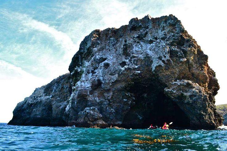 25 best adventure on catalina island images on pinterest
