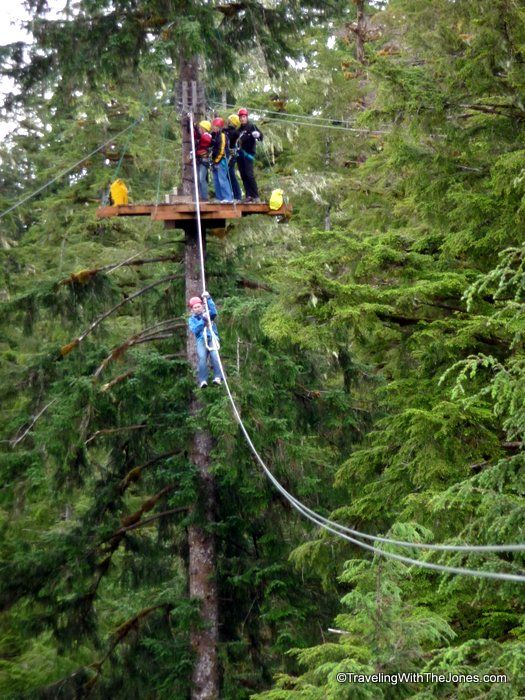 zipping one at a time Rainforest Canopy u0026 Zipline Expedition u2013 Ketchikan Alaska & 84 best Alaska Canopy Adventures images on Pinterest | Canopies ...