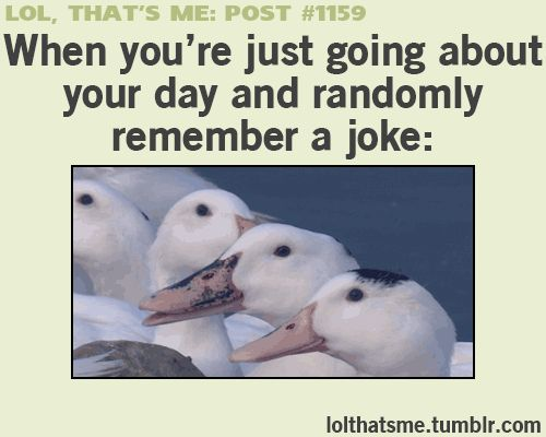 Humor gifs, funny gifs ...For more hilarious gifs visit www.bestfunnyjokes4u.com/
