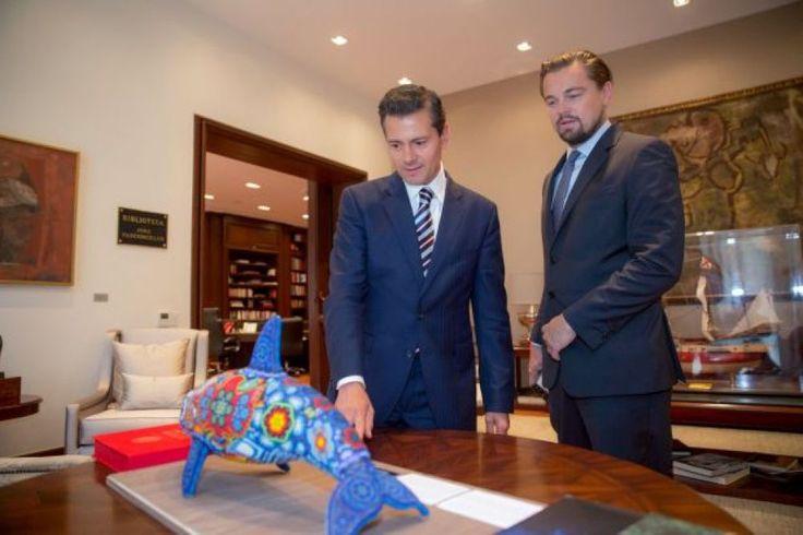 DiCaprio se unió al presidente de México para salvar a la vaquita marina