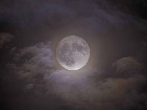 PhotoCoelum - La super Luna che fa capolino tra le nuvole di Michela Meda. 13 Novembre 2016 alle 20:00. Tutti i dettagli di ripresa al link.