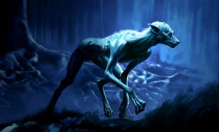 Werewolf | Harry Potter Wiki | Fandom powered by Wikia