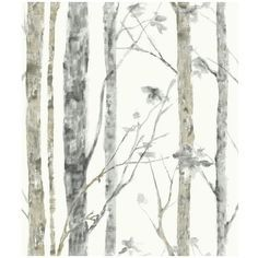 Roommates Faux Birch Trees Peel & Stick Wall Decal ($42) ❤ liked on Polyvore featuring home, home decor, wall art, white, white wall stickers, contemporary home decor, contemporary wall decals, white wall decals and vinyl wall art