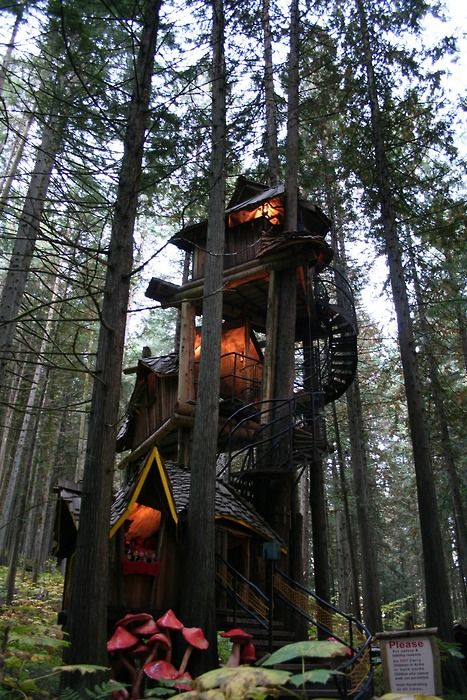 Three-story treehouse, Revelstoke, British Columbia, Canada.  Cause all treehouses should have multiple levels:)