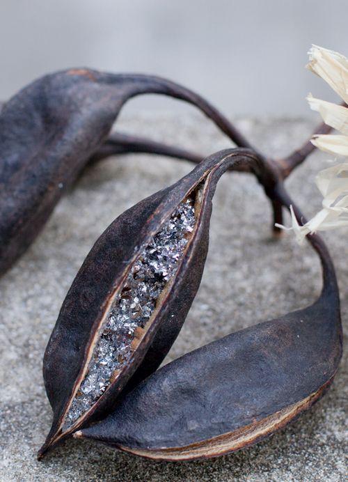 swarovski seed pods sass & bide, nature love clementine maconachie
