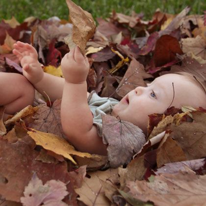 Capture photos of your baby taking in their first experience with fall.