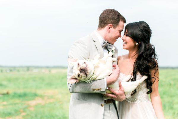 happy wedding pup - photo by Rachel Rowland