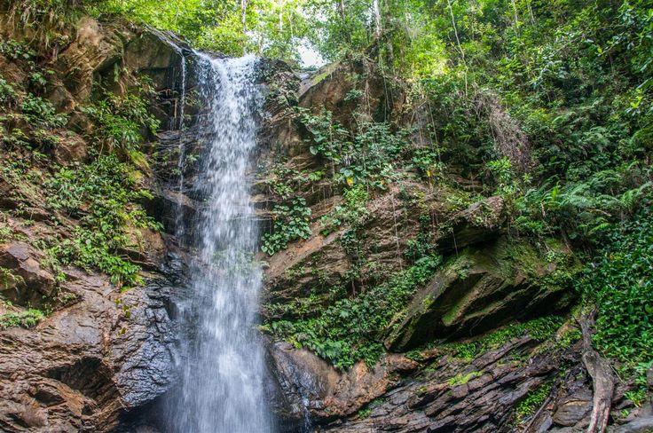 Avocat Waterfall in Trinidad, Trinidad and Tobago