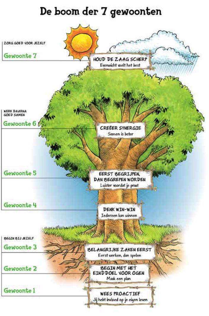 De boom der gewoonten voor een leven lang leren