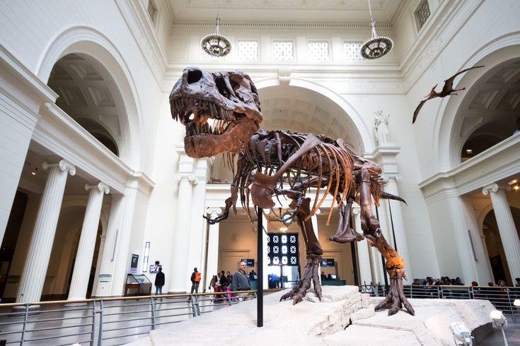 5 Museen, die Du sehen musst!